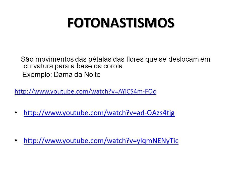 FOTONASTISMOS http://www.youtube.com/watch v=ad-OAzs4tjg