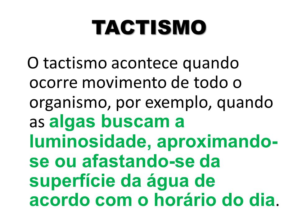 TACTISMO