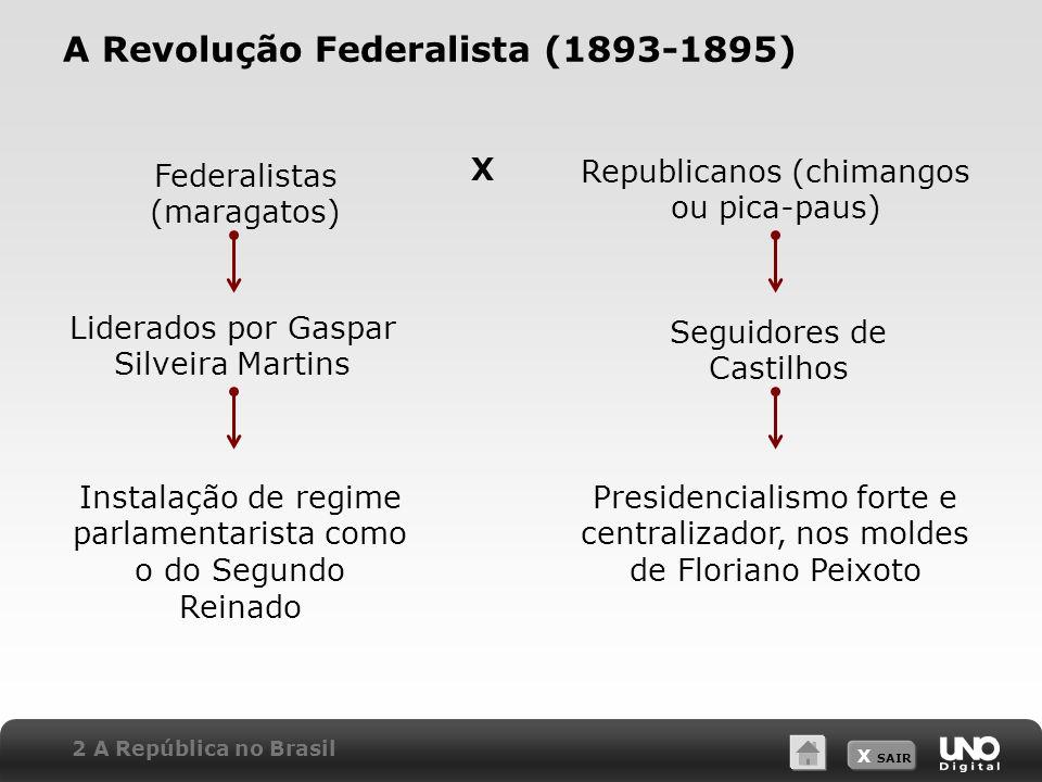 A Revolução Federalista (1893-1895)