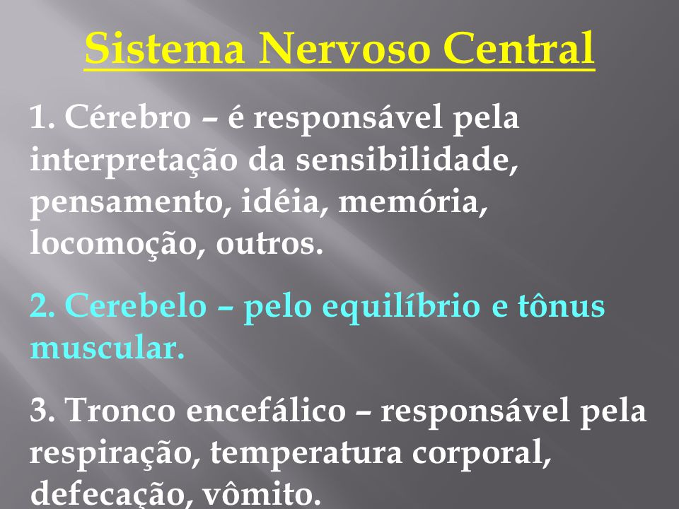 Sistema Nervoso Central