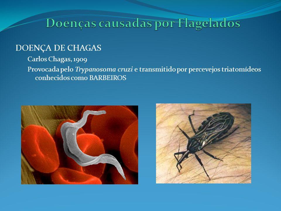 Doenças causadas por Flagelados