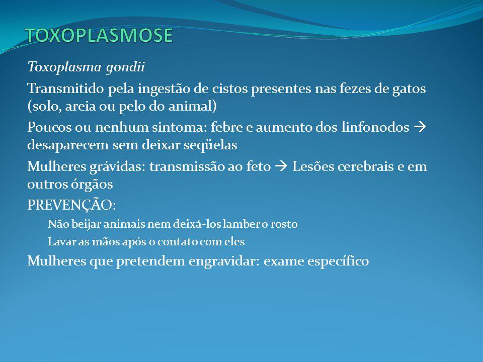 TOXOPLASMOSE Toxoplasma gondii