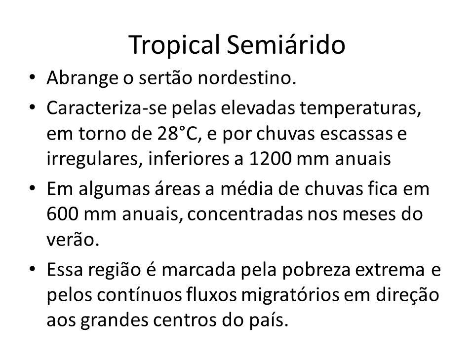 Tropical Semiárido Abrange o sertão nordestino.