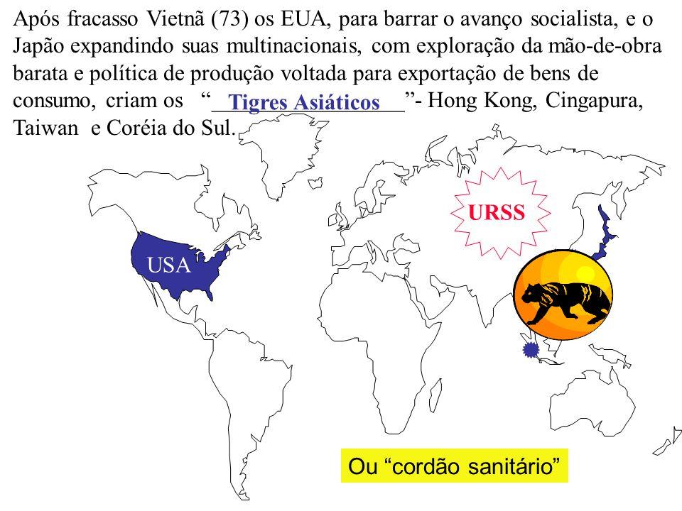 Após fracasso Vietnã (73) os EUA, para barrar o avanço socialista, e o Japão expandindo suas multinacionais, com exploração da mão-de-obra barata e política de produção voltada para exportação de bens de consumo, criam os _________________ - Hong Kong, Cingapura, Taiwan e Coréia do Sul.