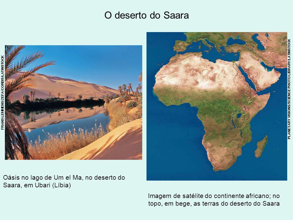 O deserto do Saara Oásis no lago de Um el Ma, no deserto do