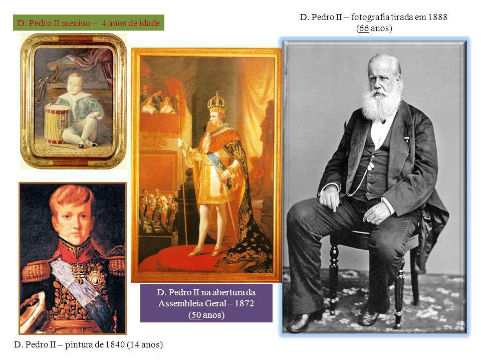 D. Pedro II – fotografia tirada em 1888 (66 anos)
