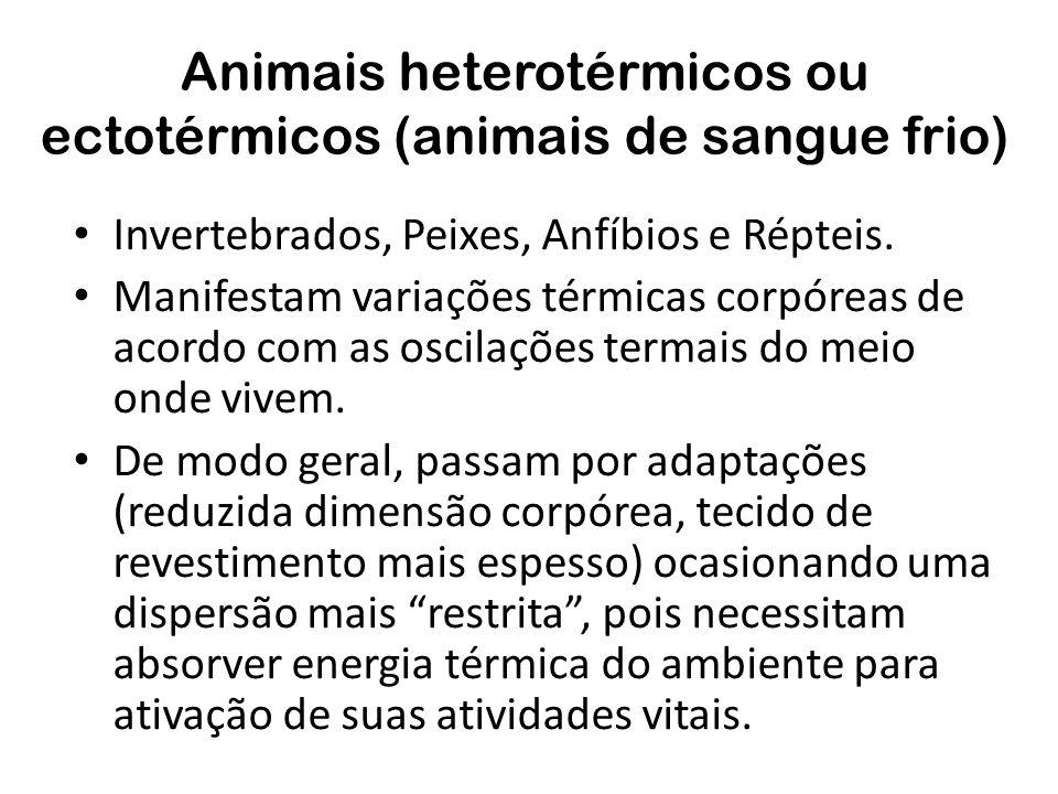 Animais heterotérmicos ou ectotérmicos (animais de sangue frio)
