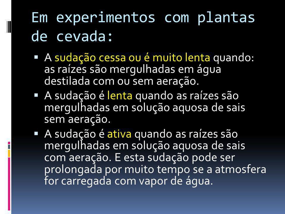Em experimentos com plantas de cevada: