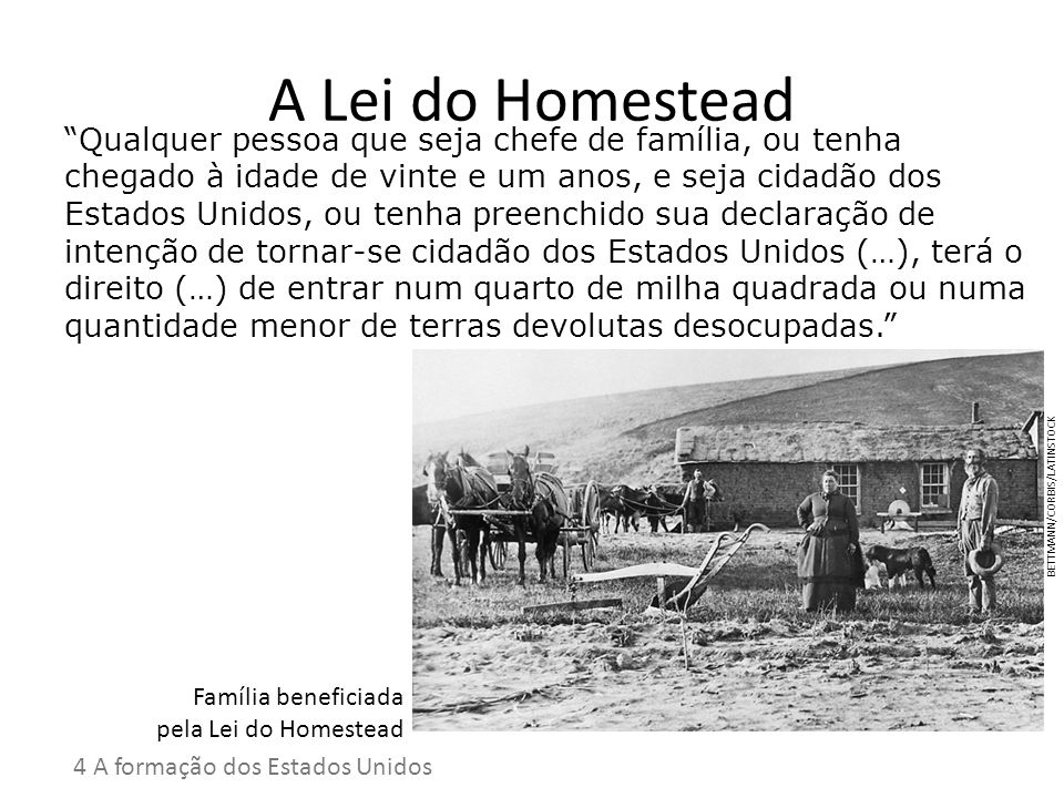 A Lei do Homestead
