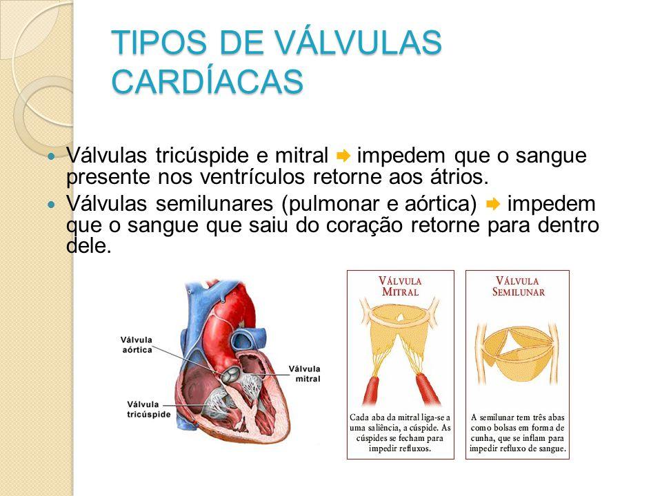 TIPOS DE VÁLVULAS CARDÍACAS