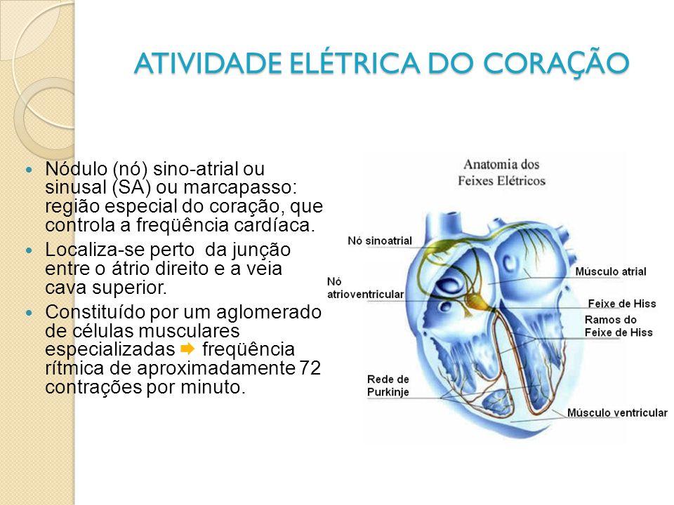 ATIVIDADE ELÉTRICA DO CORAÇÃO