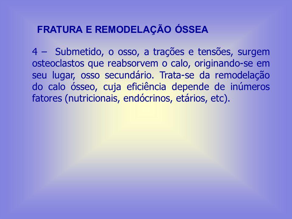 FRATURA E REMODELAÇÃO ÓSSEA