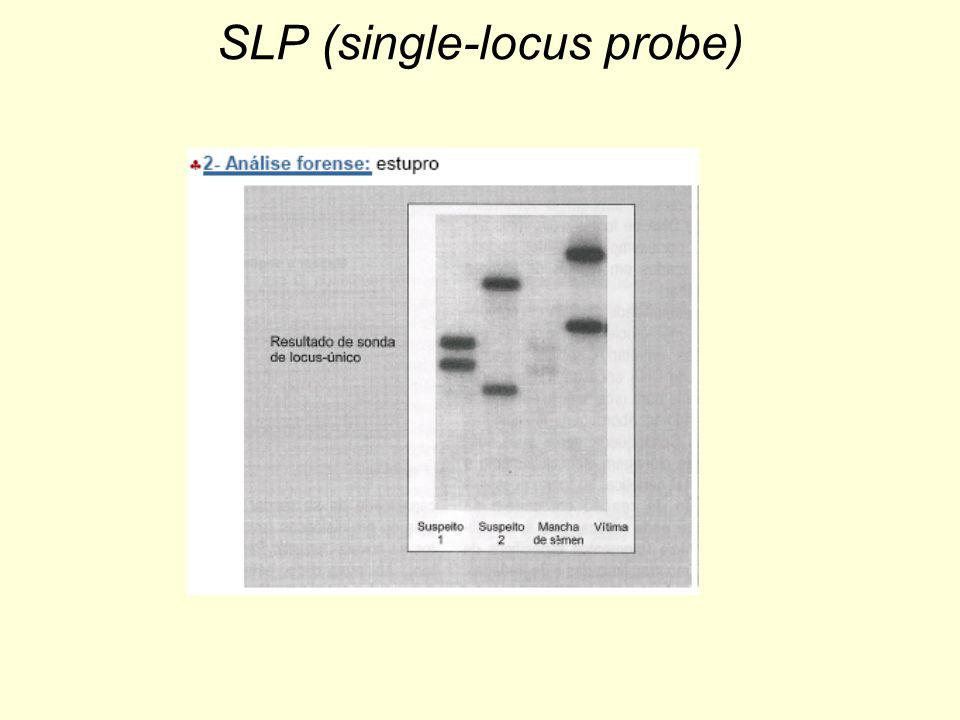 SLP (single-locus probe)