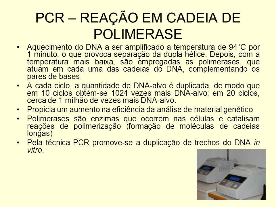 PCR – REAÇÃO EM CADEIA DE POLIMERASE