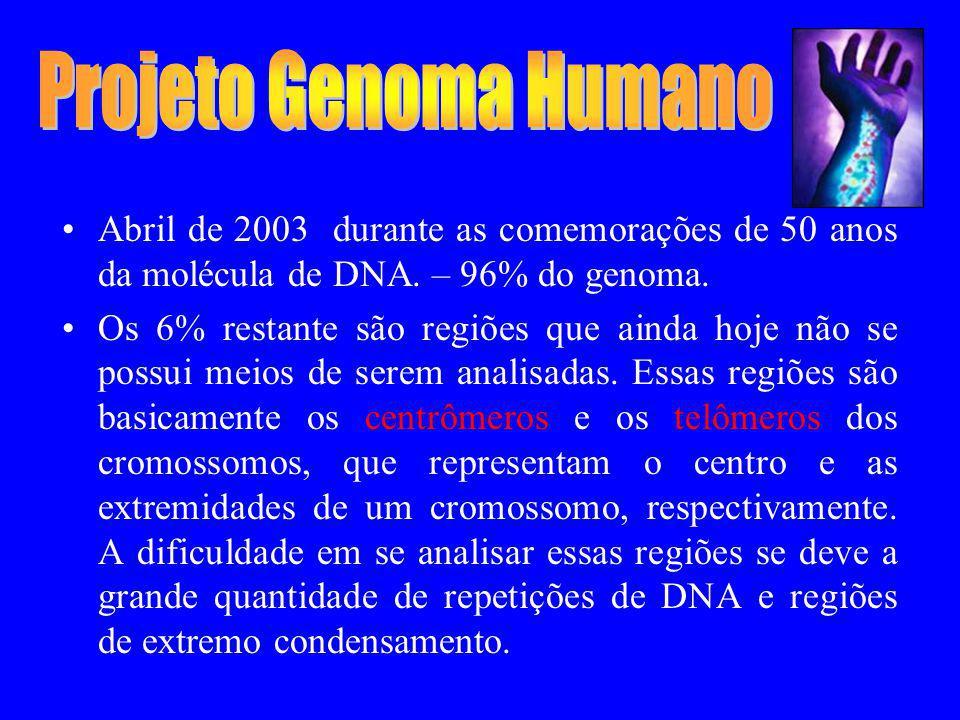 Projeto Genoma Humano Abril de 2003 durante as comemorações de 50 anos da molécula de DNA. – 96% do genoma.