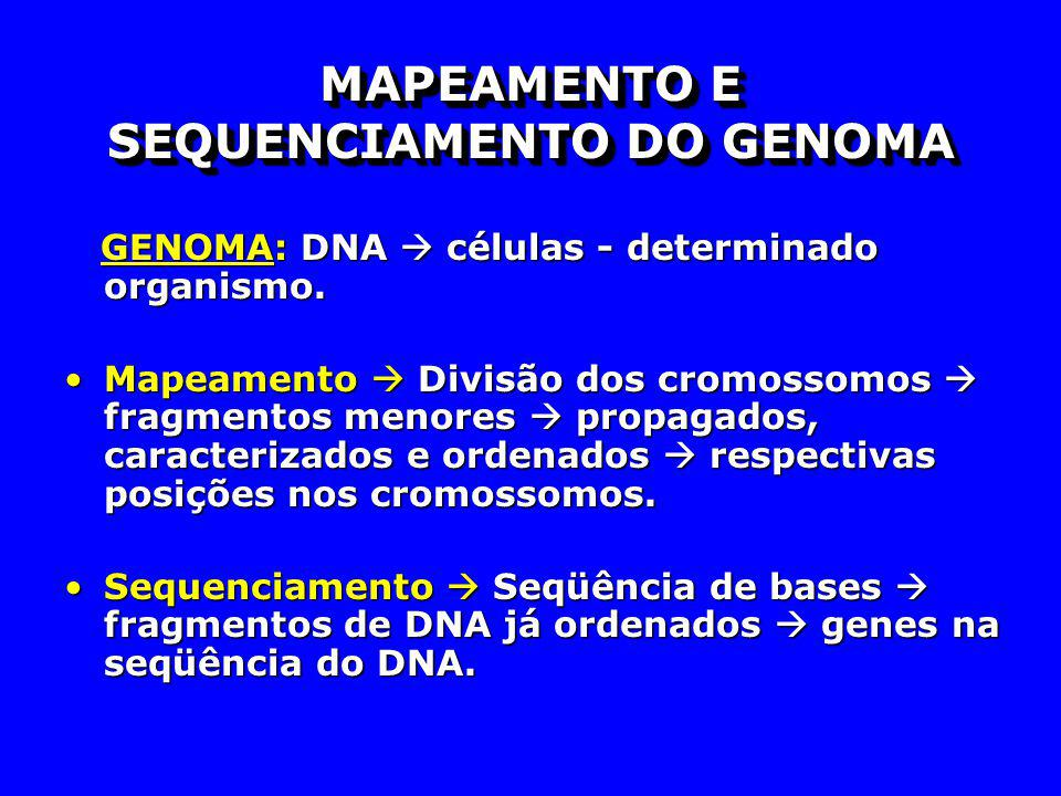 MAPEAMENTO E SEQUENCIAMENTO DO GENOMA