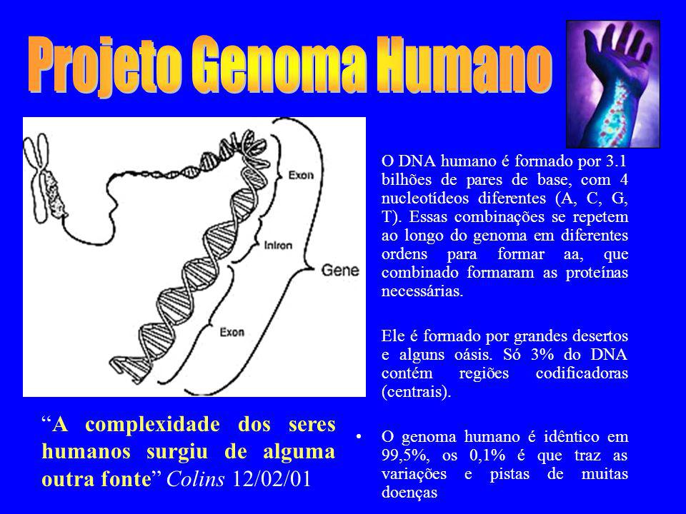 Projeto Genoma Humano