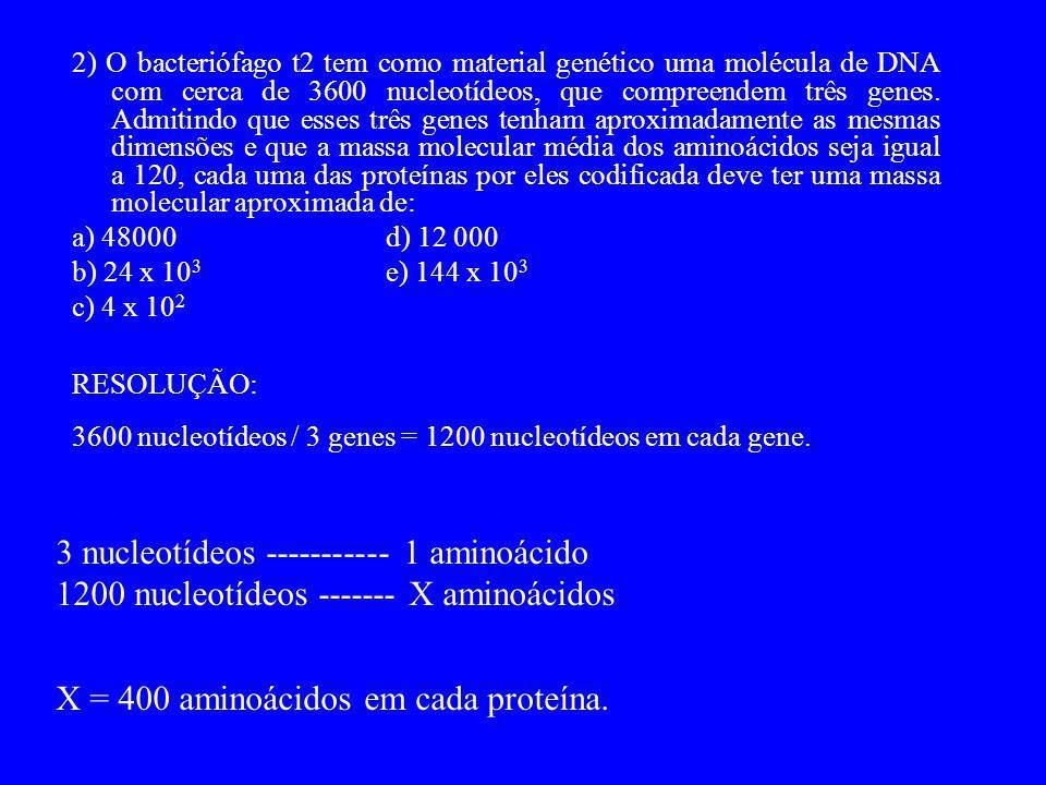 3 nucleotídeos ----------- 1 aminoácido