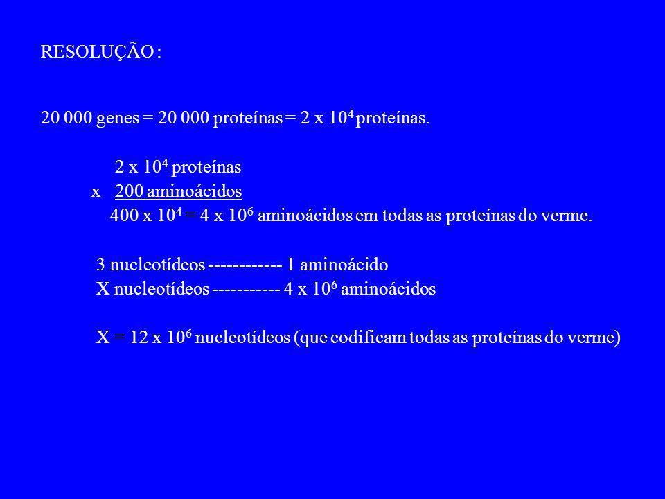 RESOLUÇÃO : 20 000 genes = 20 000 proteínas = 2 x 104 proteínas. 2 x 104 proteínas. x 200 aminoácidos.