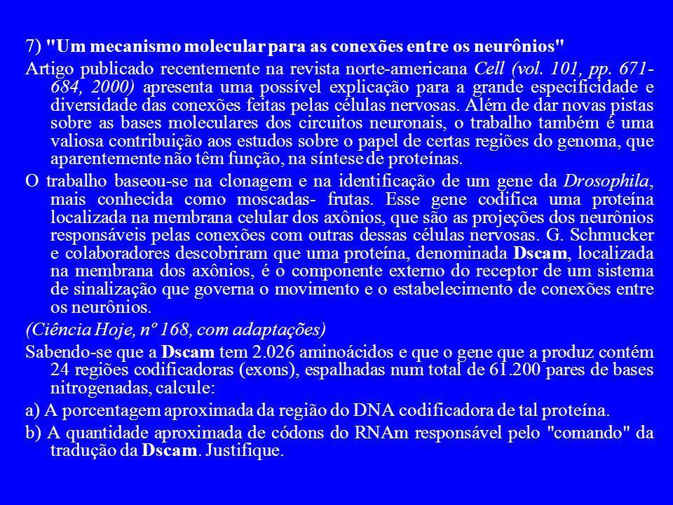 7) Um mecanismo molecular para as conexões entre os neurônios
