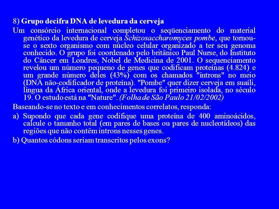 8) Grupo decifra DNA de levedura da cerveja