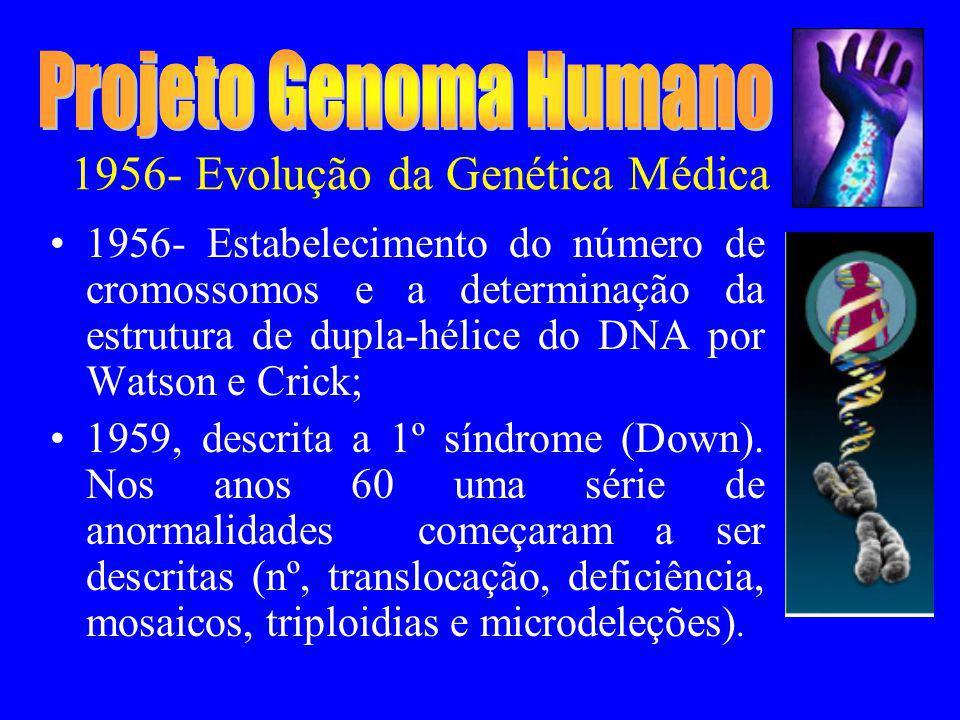 1956- Evolução da Genética Médica