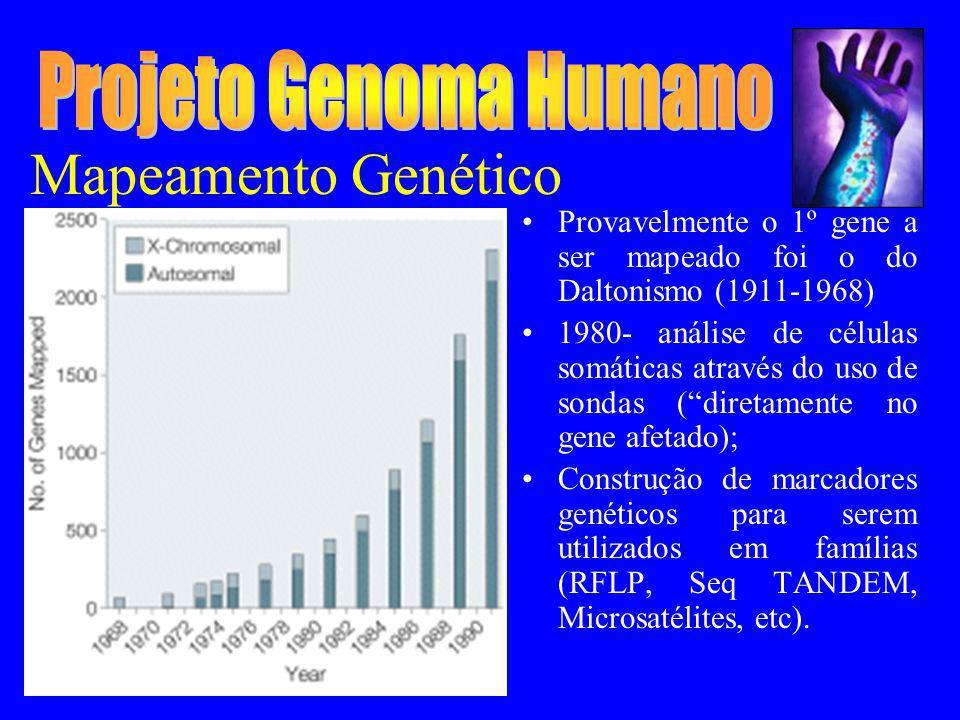 Projeto Genoma Humano Mapeamento Genético