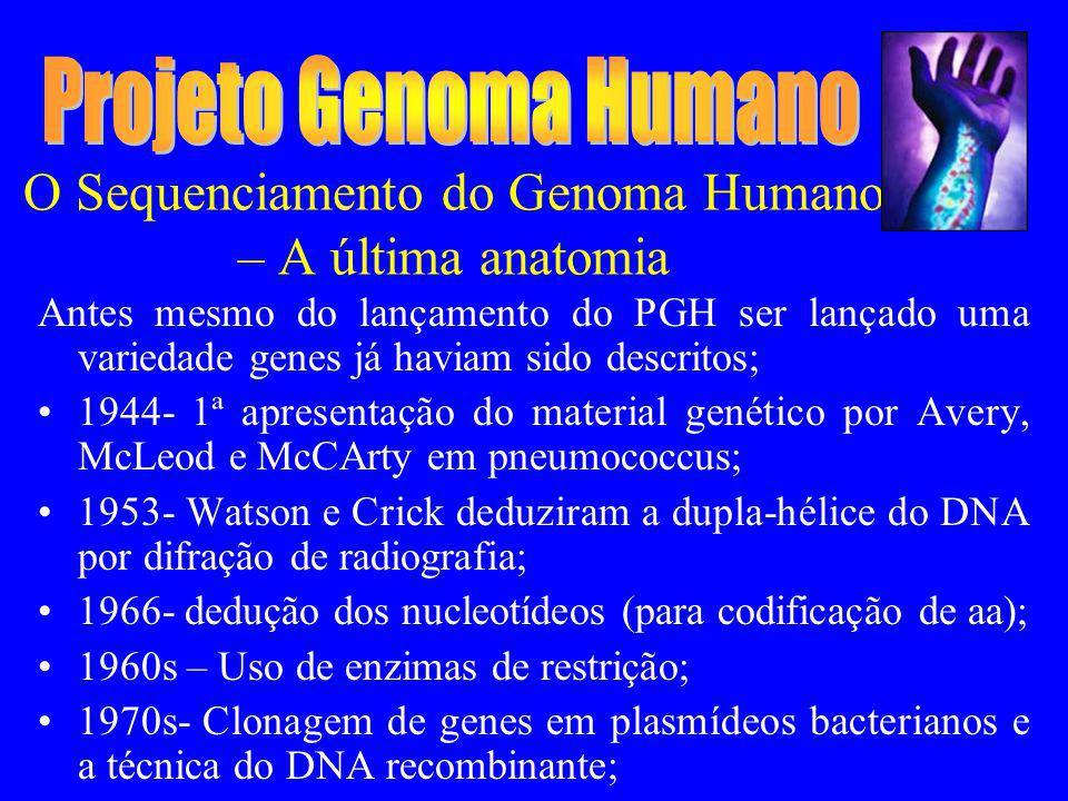 O Sequenciamento do Genoma Humano – A última anatomia