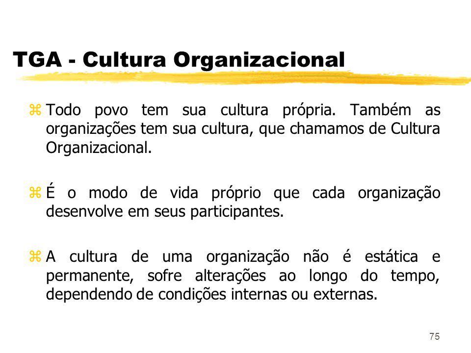 TGA - Cultura Organizacional
