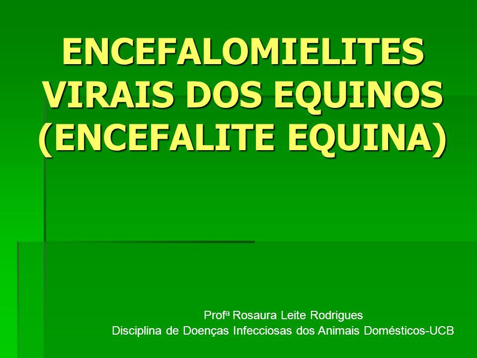 ENCEFALOMIELITES VIRAIS DOS EQUINOS (ENCEFALITE EQUINA)