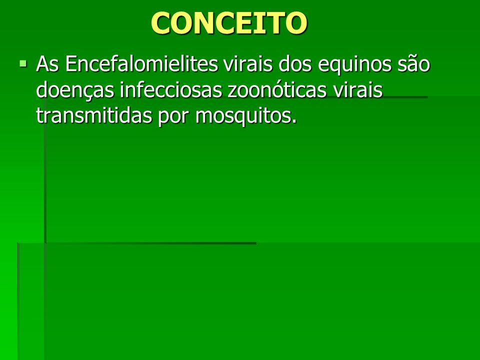 CONCEITO As Encefalomielites virais dos equinos são doenças infecciosas zoonóticas virais transmitidas por mosquitos.