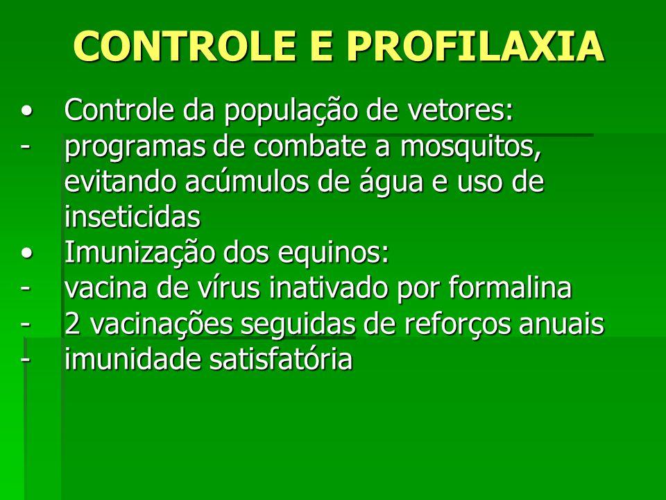 CONTROLE E PROFILAXIA Controle da população de vetores: