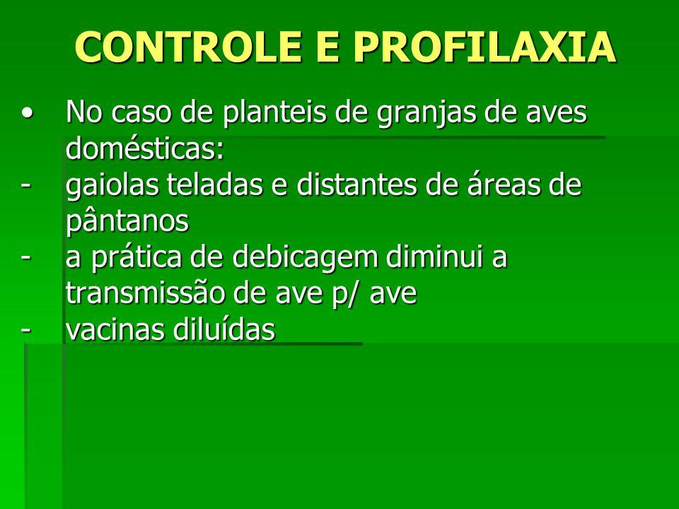 CONTROLE E PROFILAXIA No caso de planteis de granjas de aves domésticas: gaiolas teladas e distantes de áreas de pântanos.
