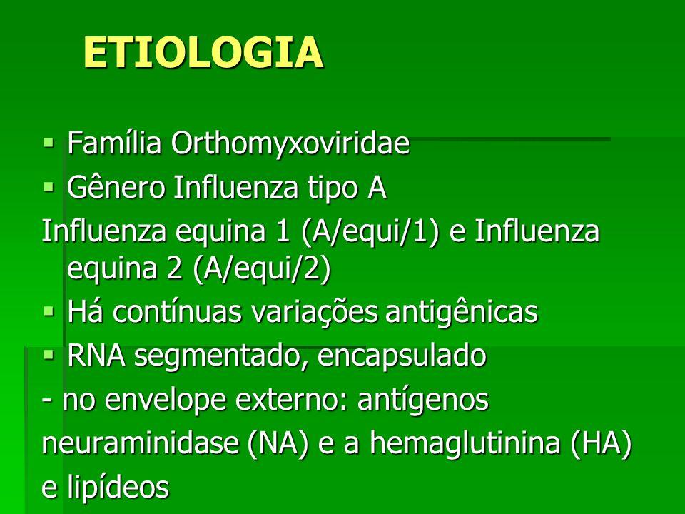ETIOLOGIA Família Orthomyxoviridae Gênero Influenza tipo A