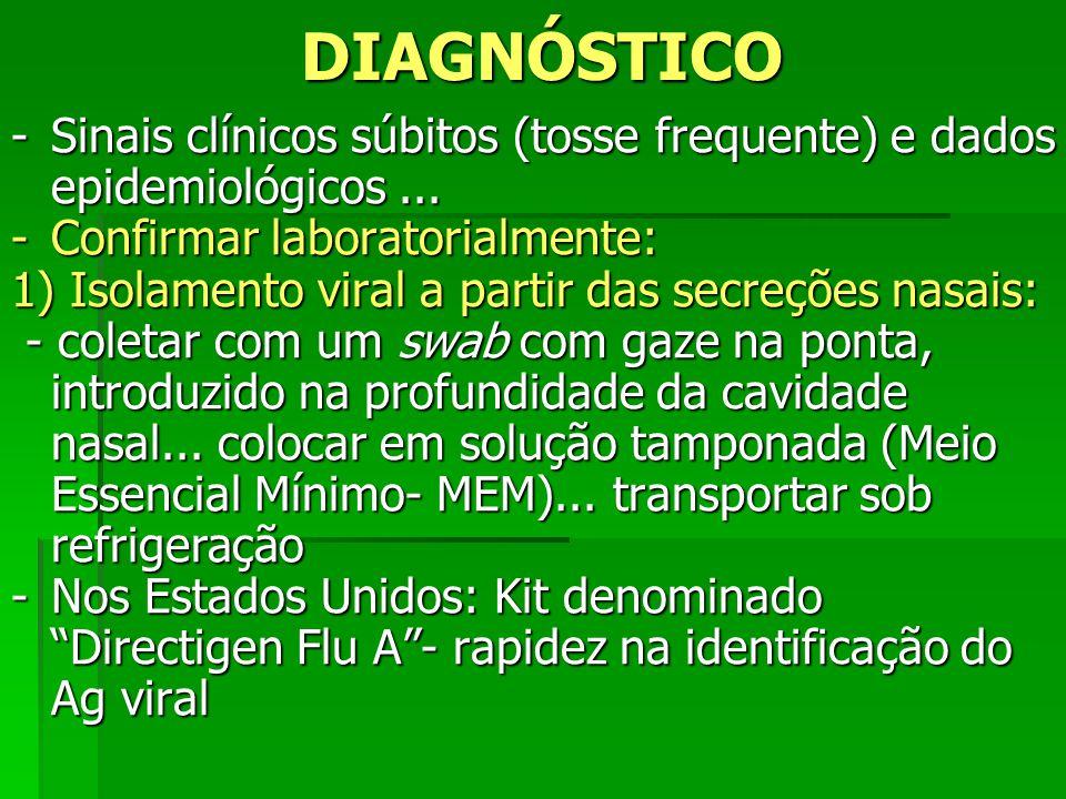 DIAGNÓSTICO Sinais clínicos súbitos (tosse frequente) e dados epidemiológicos ... Confirmar laboratorialmente: