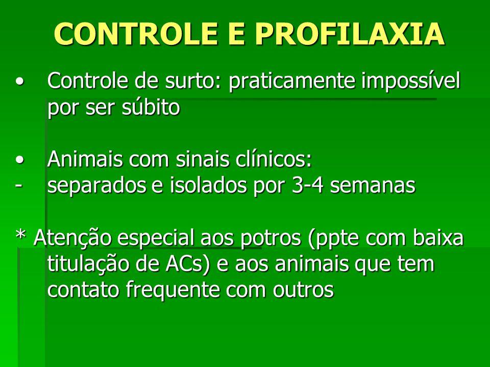 CONTROLE E PROFILAXIA Controle de surto: praticamente impossível por ser súbito. Animais com sinais clínicos: