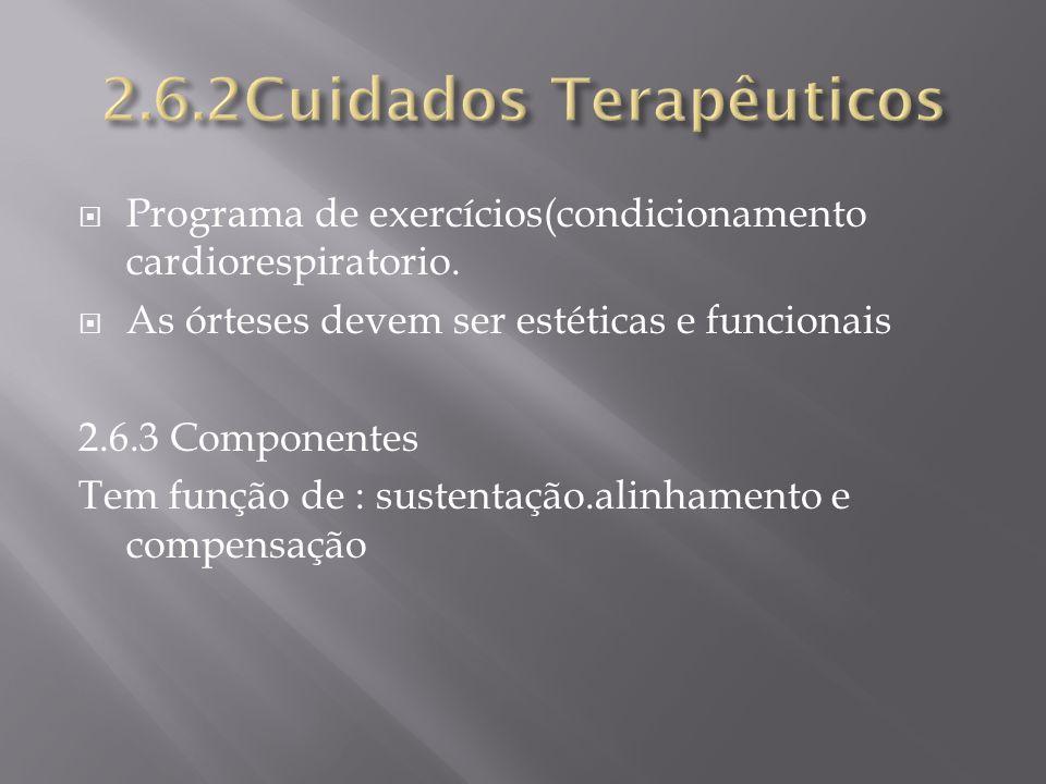 2.6.2Cuidados Terapêuticos