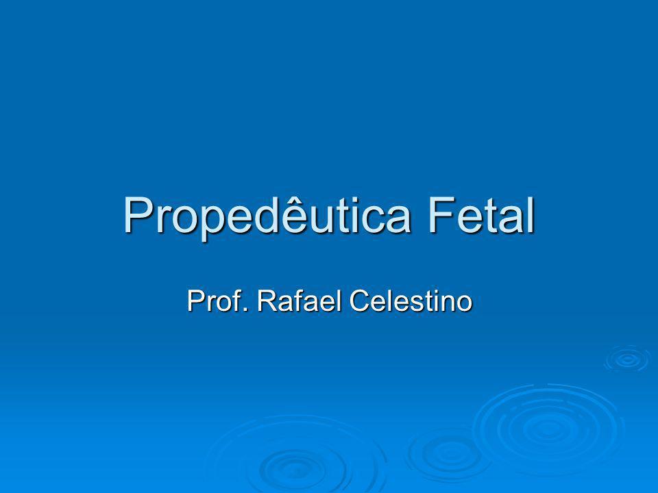 Propedêutica Fetal Prof. Rafael Celestino
