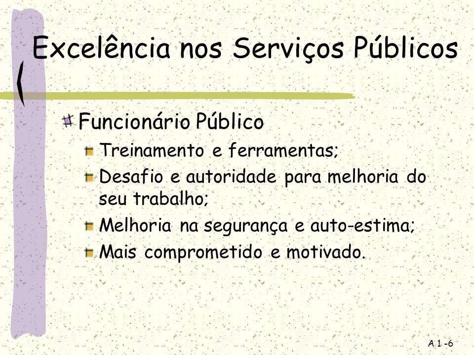 Excelência nos Serviços Públicos