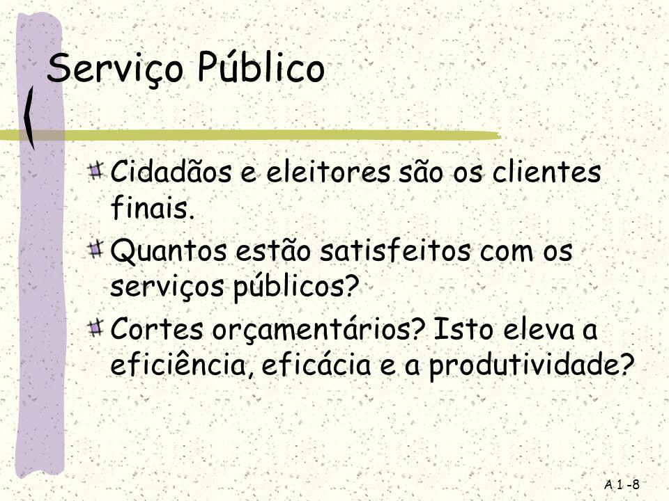 Serviço Público Cidadãos e eleitores são os clientes finais.