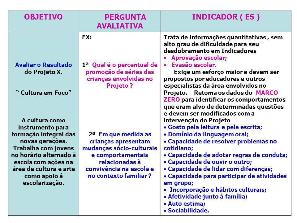 OBJETIVO PERGUNTA AVALIATIVA INDICADOR ( ES )