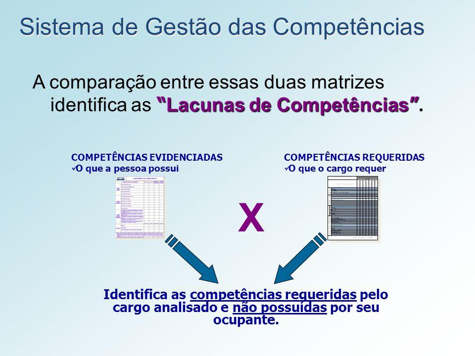 X Sistema de Gestão das Competências