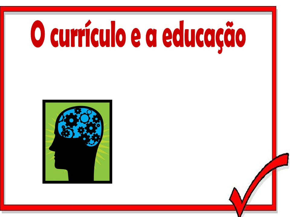 O currículo e a educação