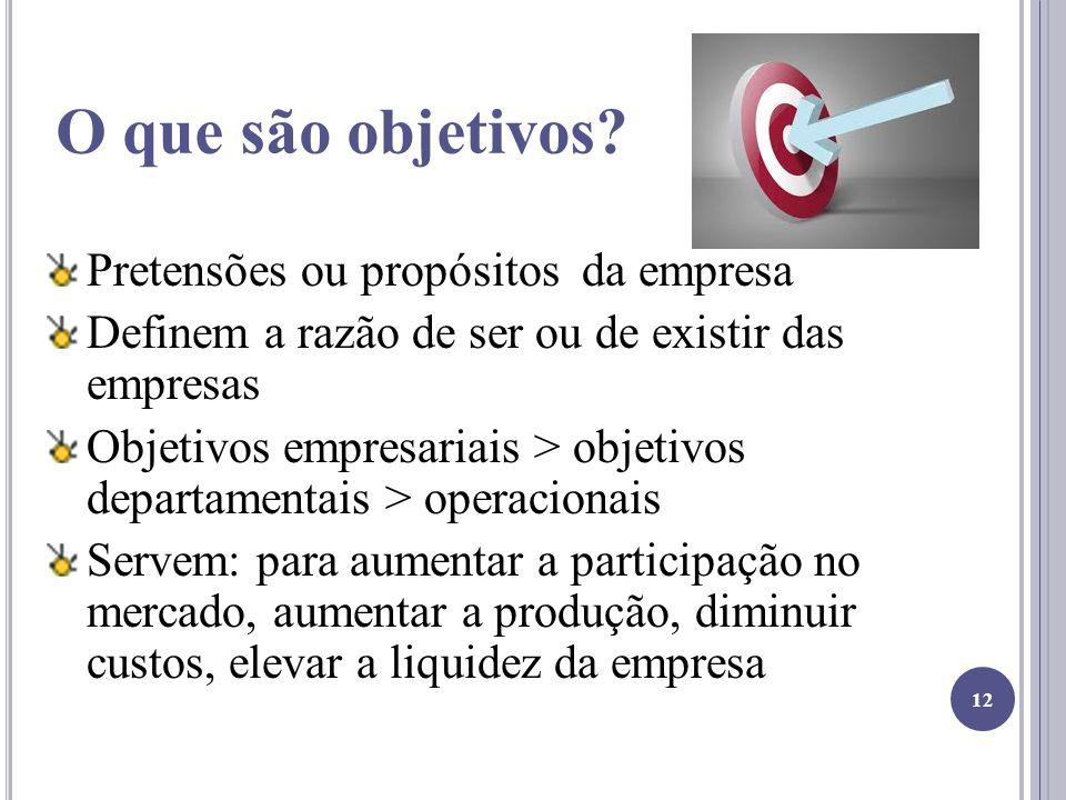 O que são objetivos Pretensões ou propósitos da empresa