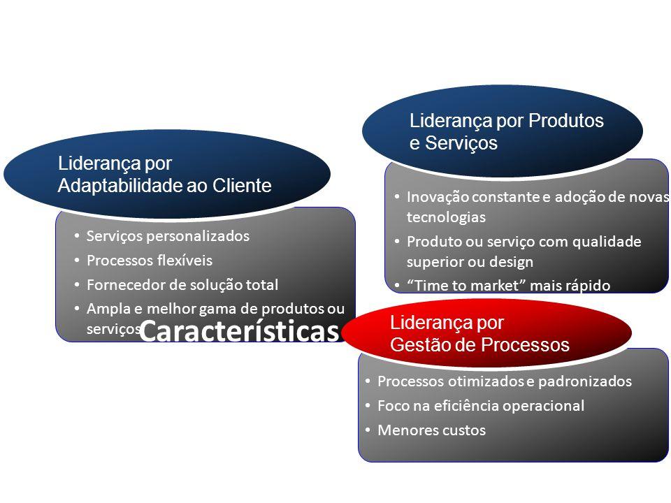 Características de cada foco estratégico