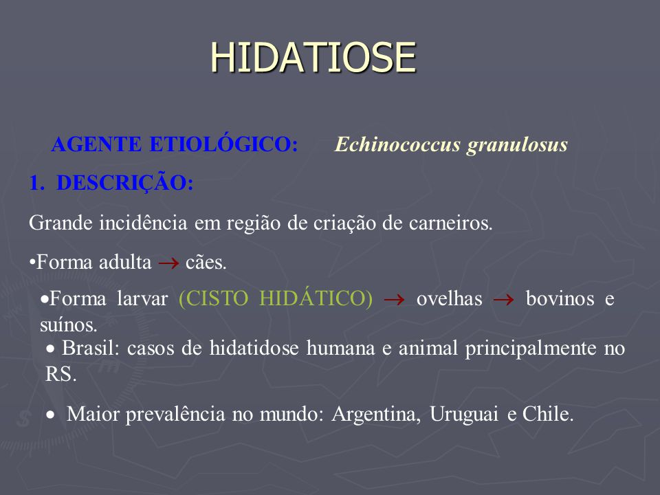 HIDATIOSE AGENTE ETIOLÓGICO: Echinococcus granulosus 1. DESCRIÇÃO: