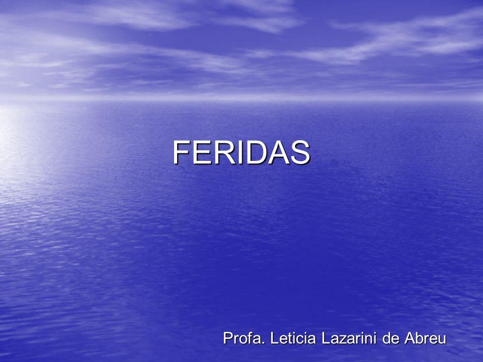 Profa. Leticia Lazarini de Abreu