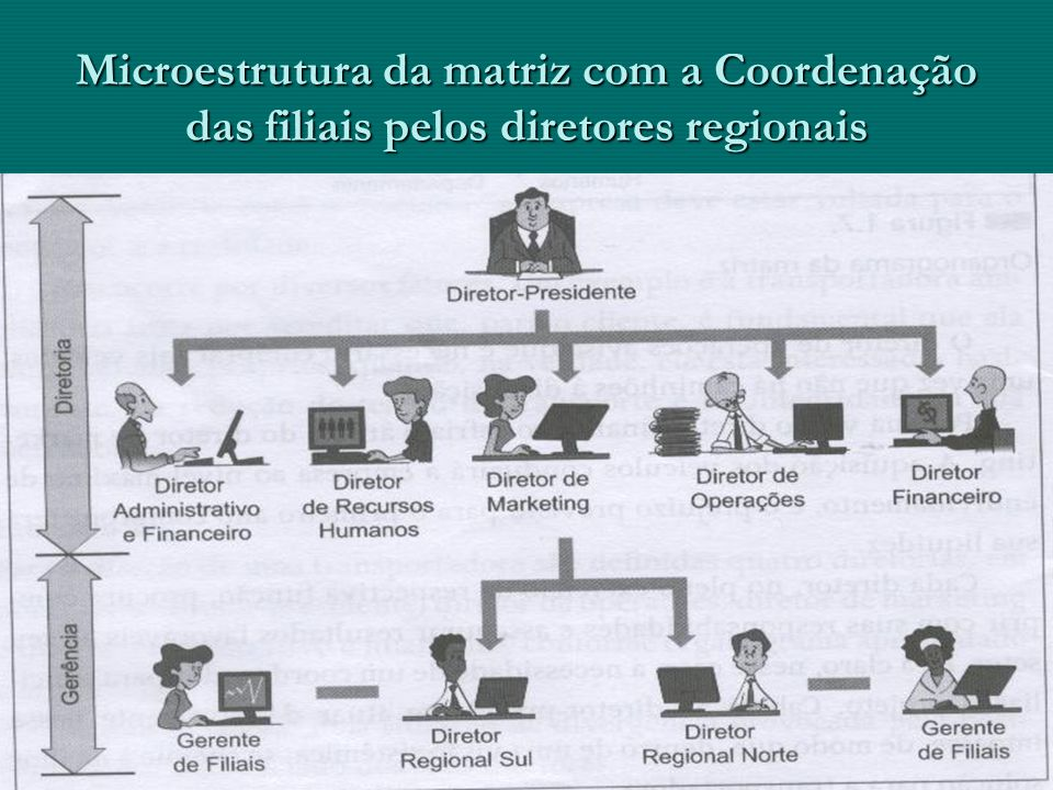 Microestrutura da matriz com a Coordenação das filiais pelos diretores regionais