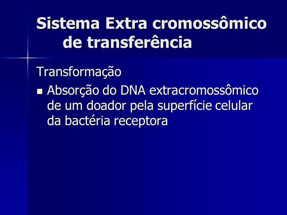 Sistema Extra cromossômico de transferência