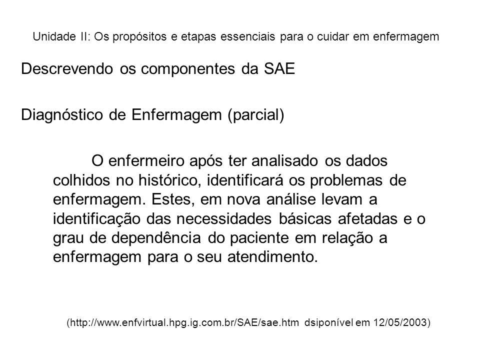 Descrevendo os componentes da SAE Diagnóstico de Enfermagem (parcial)